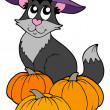 Cat with hat and pumpkins - Stock Vector
