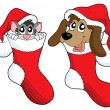 Cute cat and dog in Christmas socks — Stock Vector