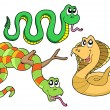 Stock Vector: Cute snakes collection