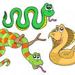 Cute snakes collection - Stock Vector
