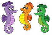 Cute sea horses — Stock Vector