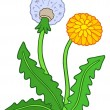 Stock Vector: Dandelion