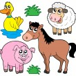 Stock Vector: Farm animals collection 5