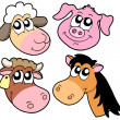 Farm animals details collection — Stock Vector
