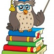 Royalty-Free Stock Vector Image: Owl teacher and books