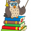 Stock Vector: Owl teacher and books