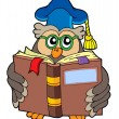 Stock Vector: Owl teacher reading book