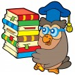 Owl teacher holding pile of books — Stock Vector