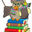 Stock Vector: Owl teacher with parchment on books