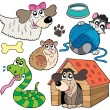 Pet collection 2 — Stock Vector