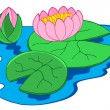 Pink water lilies — Stock Vector