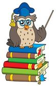 Owl teacher and books — Stock Vector