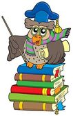 Owl teacher with parchment on books — Stock Vector