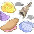 Sea shells collection — Stock Vector #2260252