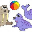 Seal collection — Stock Vector