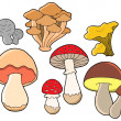 Various fungi collection — Stock Vector