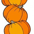 Vertical line of pumpkins - Stock Vector