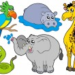 Royalty-Free Stock Vector Image: Wildlife animals collection