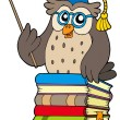 Wise owl teacher on books — Stock Vector #2261623