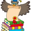 Wise owl with diploma and books - Stock Vector