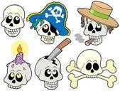 各类头骨集合 — 图库矢量图片