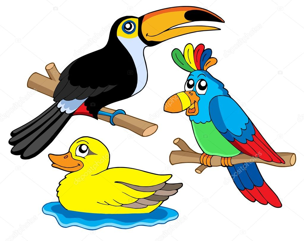 Various birds collection 01 - vector illustration.  Stock Vector #2261177