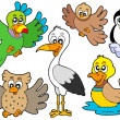 Royalty-Free Stock Vector Image: Cute birds collection 2