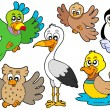 Cute birds collection 2 — Vector de stock #2344419