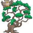 Big pine tree with cartoon owl — Stock Photo