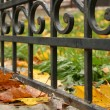 Forged fence — Stock Photo #1859488
