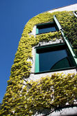Spring time -ecological modern building. — Stock Photo