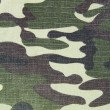 Camouflage-Military Texture - Foto de Stock  