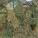 Camouflage Mesh — Stock Photo #1964732