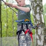 Young boy climbing — Stock Photo #2551996
