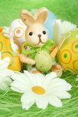 Bunny — Zdjęcie stockowe