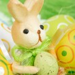Bunny — Stock Photo #2618632