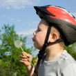 Boy blowing dandelion — Stock Photo #2620484