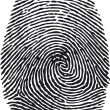Fingerprint-vector — Stock Vector