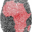 Stock Vector: Africa-fingerprint