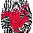 North America-fingerprint — Stock Vector