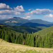 Royalty-Free Stock Photo: Summer in mountains