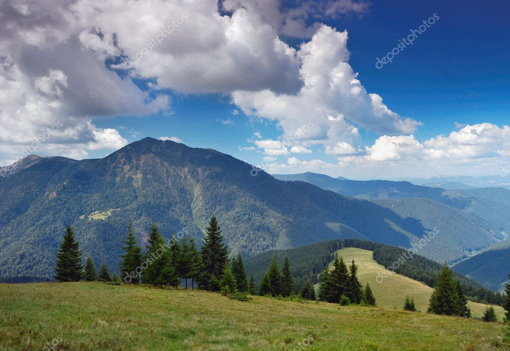 The end of summer. The picture is made in mountains Carpathians, Ukraine. Ahead mountain Petrosul, the Marmarossky file, on border with Romania.  Stock Photo #2317408