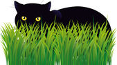 Black cat — Stock Vector