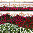 Flowerbed with oriental ornament — Stock Photo