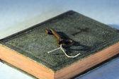 老书和密钥 — 图库照片