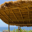 Tropical roof — Stock Photo