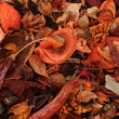 pot pourri — Stockfoto
