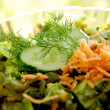 Salad from sekale — Stock Photo #2121922