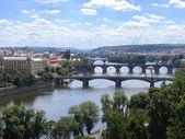 Prague summer panorama — Stock Photo
