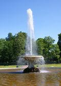 Garden of Peterhof — Stock Photo